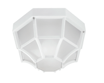 AE03 | Octagon Ceiling Mount