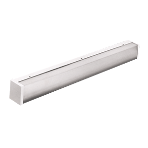 BAIW | Wall LED Prison Grade