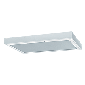 BAF | Surface Mount LED Prison Grade